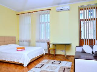 Bright Studio near Volodymyrski Park (Vl6.9) - Kiev vacation rentals