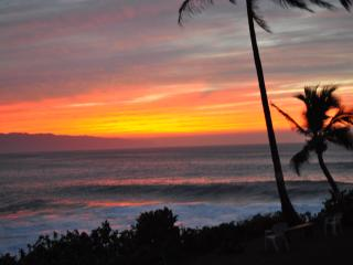 SUZYS TROPICAL RETREAT STAY 6 NT & GET THE 7TH FRE - Kapoho vacation rentals