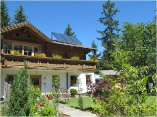 Landhaus Hinteregg, premium apartment in ski area - Flachau vacation rentals