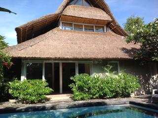 3 Bed Villa in Seminyak + extra 1 bedroom villa - Seminyak vacation rentals