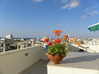 Sun-drenched Duplex w/ Private Rooftop and Parking - Israel vacation rentals