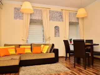 A stylish apartment in the heart of Kiev - Kiev vacation rentals