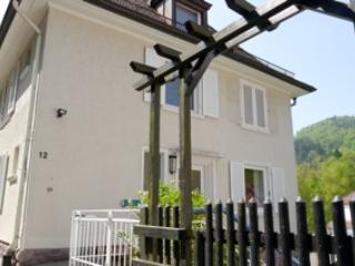 Cosy Apartment close to the city center - Baden-Baden vacation rentals