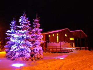 Rental cottages - Saint Petersburg vacation rentals