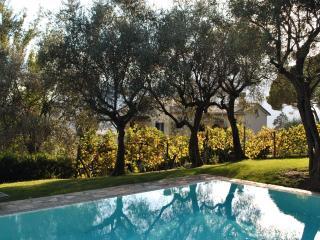 cfac3614-c2ce-11e2-ae46-90b11c1afca2 - Santa Teresa di Gallura vacation rentals