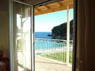 VADIUS APARTMENTS - Sidari vacation rentals