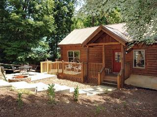 2 Bedroom Log Cabin 1 mile to Teaster Lane/Trolley Stop Pigeon Forge TN - Tennessee vacation rentals