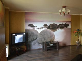 A large 85 sq m one-bedroom apartment near the river - Kharkiv Oblast vacation rentals