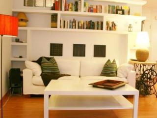 2 Bedroom Apartment - Center Madrid - Miami Beach vacation rentals
