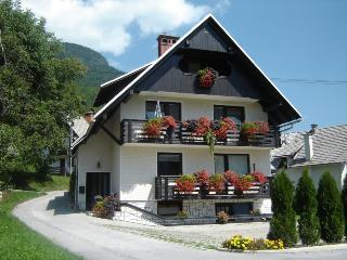 Apartment Bohinj Lake 2-5 Prs. - Dolenjske Toplice vacation rentals