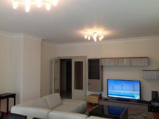 ID 3091 Luxury 2br apartment in Brussels - Belgium vacation rentals