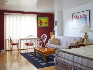 Large studio apt near Golden Gate Park and Beaches - San Francisco vacation rentals