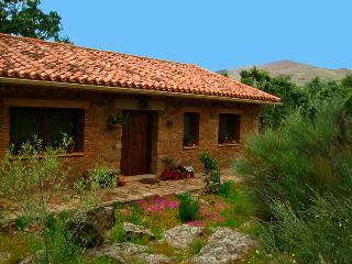 Rural Apartment El Melojar - Cabezabellosa vacation rentals