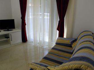 Villa  Koka - Rovinj vacation rentals