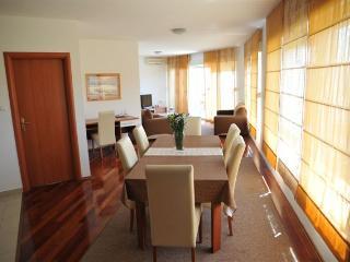 APARTMAN LEA ZADAR - Sutomiscica vacation rentals