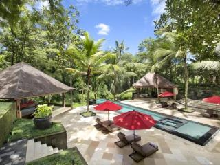 Villa The Sanctuary Bali Owner Listing - Canggu vacation rentals