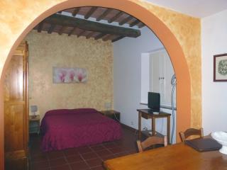 Studio for 2/3 persons - Suvereto vacation rentals