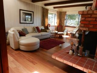 2b/1b hs, woodland vus, 10min2SF, hike2 2 beaches - Mill Valley vacation rentals