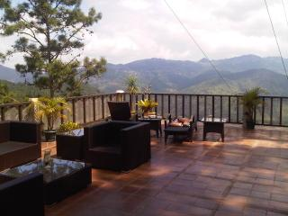 Top of the Mountain Chalet Style Estate - Woodston vacation rentals