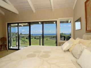 Welcome To Peace And Tranquility - Keaau vacation rentals