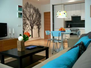 New quality apartment in the centre of Seville - Seville vacation rentals
