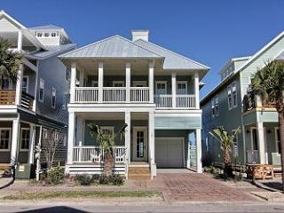Blue Willow #58 - Texas Gulf Coast Region vacation rentals