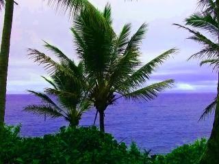 Ocean View from The Whale House - The Whale House @ Kehena Beach, The Big Island - Pahoa - rentals