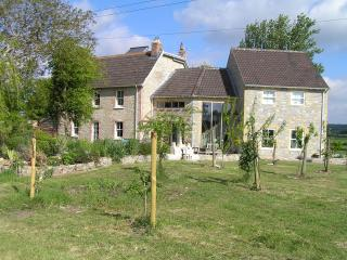 Large rural family house - own tennis court & views - South Petherton vacation rentals