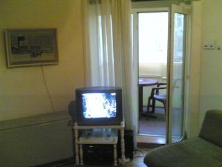 Appartment for rent Serbia Belgrade Dorcol. - Serbia vacation rentals