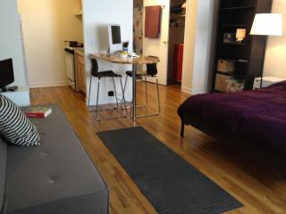Manhattan Studio -Bedroom, Bathroom, Kitchen CUTE! - New York City vacation rentals