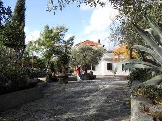 Agriturismo Cascina dei peri - Castelnuovo Magra vacation rentals
