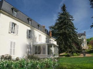 DOMAINE DE LA THIAU, a B&B close to Gien Briare Sancerre only 150km south of Paris - Briare vacation rentals
