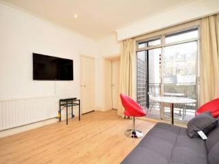 South Kensington superb apartment and location - London vacation rentals
