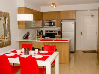 Downtown with terrace (Family friendly) - Montreal vacation rentals