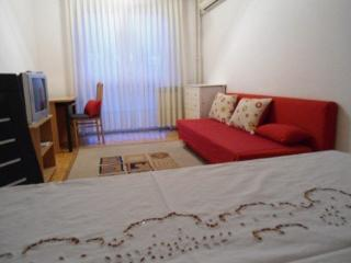 Apartment  in Zagreb  40m2 - 50 eura / night - Zagreb vacation rentals
