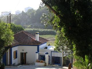 Ericeira rustic house close to the beach - Ericeira vacation rentals