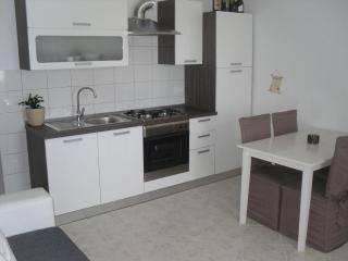Superb apartment near Novalja and Zrce beach - Karlobag vacation rentals