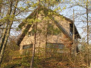 Whispers of the Wilderness - Minocqua vacation rentals