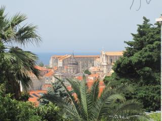 Apartment MAJA Z - Southern Dalmatia vacation rentals
