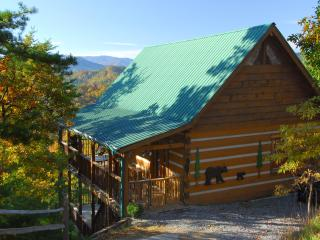 Stunning Views! Privacy, 3 King beds, many extras! - Pigeon Forge vacation rentals