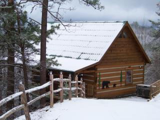 Dec 15-18 $129/nt! Stunning View, Privacy, Kg bds - Pigeon Forge vacation rentals