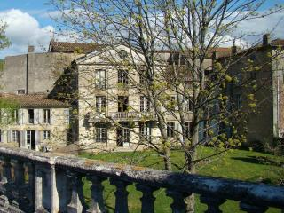 Hip Village Chateau, Walled Garden, Languedoc Rous - Languedoc-Roussillon vacation rentals