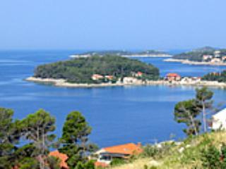 Apartments Panoramic Jelica - Blato vacation rentals