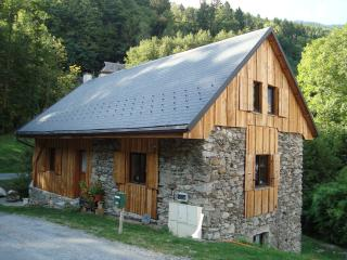 Tranquil former watermill with idyllic garden - Rhone-Alpes vacation rentals