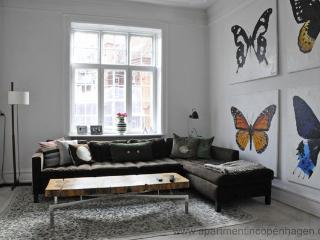 Center - Close To Nyhavn - 388 - Copenhagen Region vacation rentals
