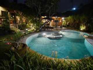 Bali Heaven - 4 Bedroom Villa with Private Pool - Kerobokan vacation rentals