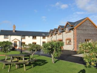 Long Mountain Bed and Breakfast - Long Mountain Five Star Bed & Breakfast, Welshpool - Welshpool - rentals