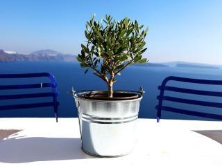 Menia's Cave House - Santorini vacation rentals