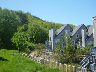 Blue Mountain Hillside Studio Loft - Collingwood vacation rentals
