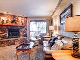 Comfortable Breckenridge 1 Bedroom Free shuttle to lift - AT002 - Breckenridge vacation rentals